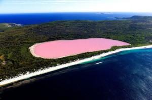 Lake_HillierAustralieOceanie1-659x438