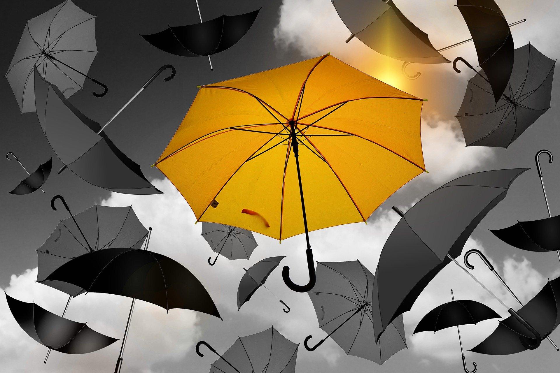 parapluie de qualité